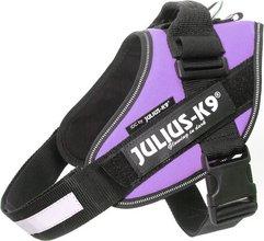 Julius-K9 IDC Powerharness Baby1 - fjólublátt