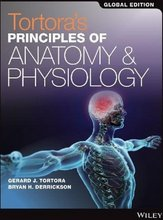 Principles of Anatomy and Physiology Set, Global Edition