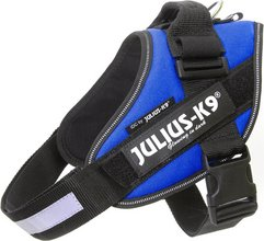 Julius-K9 IDC Powerharness Baby2 - blátt