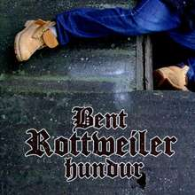 Bent: Rottweiler hundur