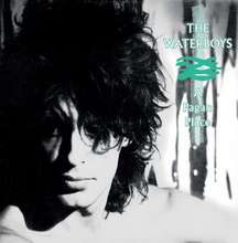 The Waterboys: A Pagan Place