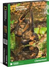 Clementoni 1000 bita púsl - Simpansi