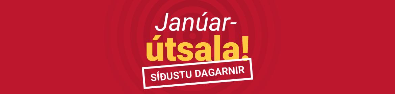 janúts - síðustu dagarnir