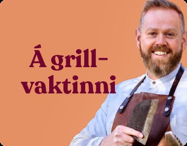 MINI grilluppskriftir 3 - Læknir